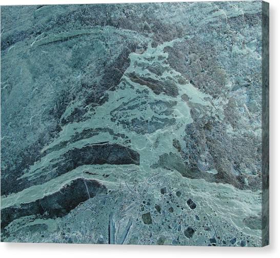 Oceanic Creature Canvas Print