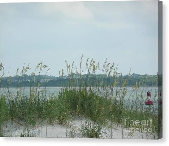 Oceanview Through Seaoats Canvas Print by Barb Montanye Meseroll