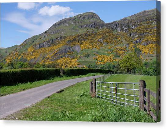 Canvas Print featuring the photograph Ochil Hills In Clackmannanshire by Jeremy Lavender Photography