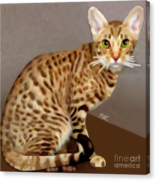 Canvas Print featuring the painting Ocicat by Marian Cates