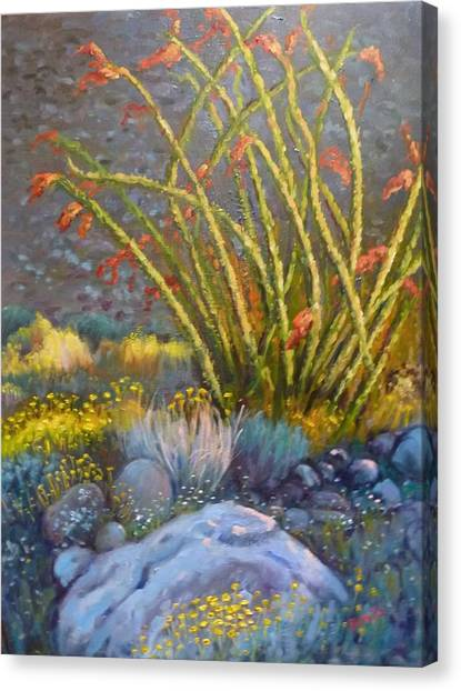 Ocotillo At Dusk Canvas Print