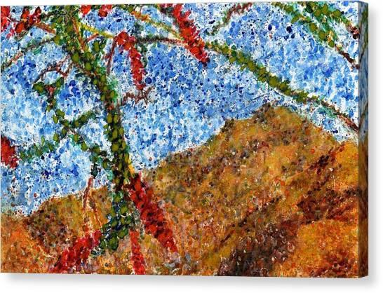 Ocotillo In Bloom Canvas Print by Cynthia Ann Swan