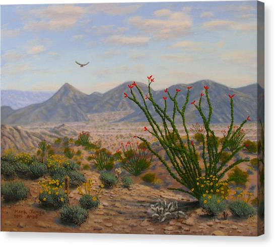 Canvas Print - Ocotillo Paradise by Mark Junge