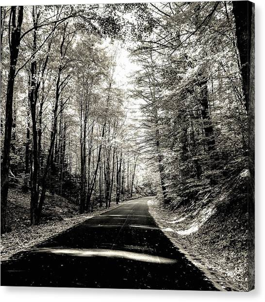 October Grayscale  Canvas Print