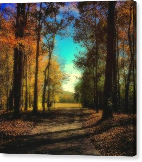 Canvas Print - October Path by Steven Gordon