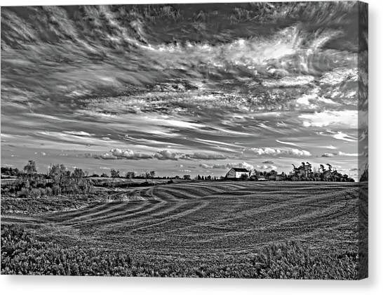 October Patterns Bw Canvas Print