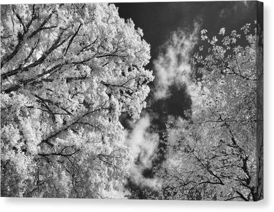October Sky Ir Canvas Print