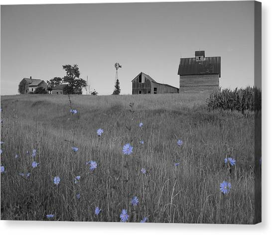 Canvas Print featuring the photograph Odell Farm Iv by Dylan Punke