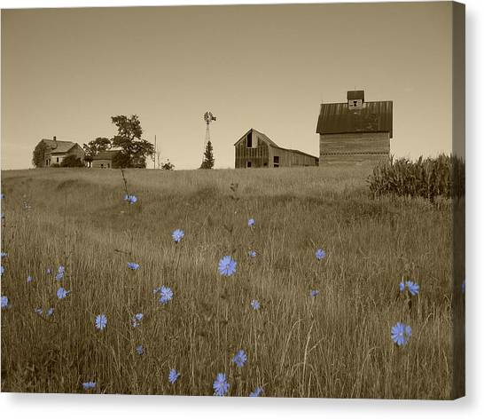 Canvas Print featuring the photograph Odell Farm V by Dylan Punke
