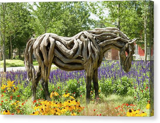 Gatineau Park Canvas Print - Odyssey The Horse Sculpture Made Of Driftwood By Heather Jansch. by Bob Corson