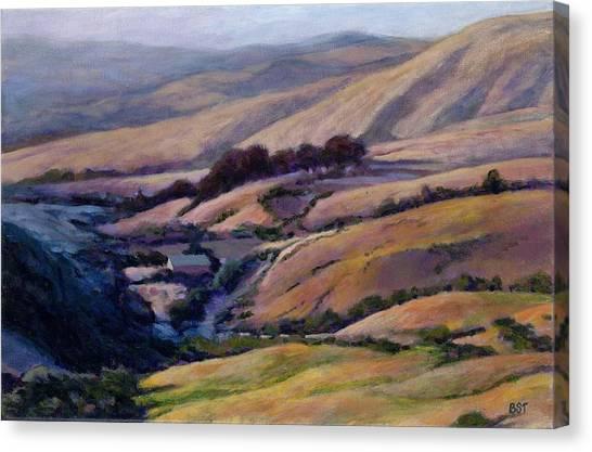 Off Jalama Road Canvas Print