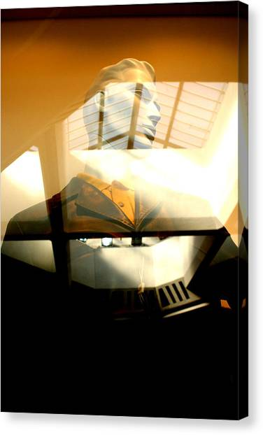 Off Through The Roof Canvas Print by Jez C Self