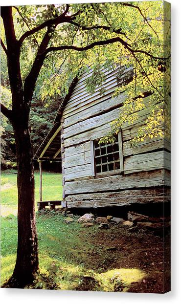 Ogle Cabin Canvas Print by Alan Lenk
