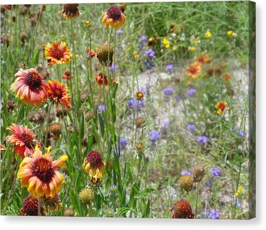 Oh Hi Orange Red Purple Flowers Canvas Print