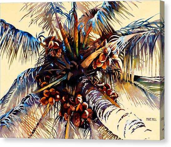 Coconut Canvas Print - Oh Nuts by Mike Hill