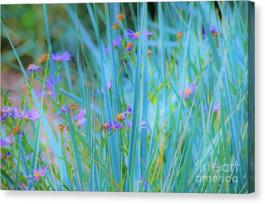 Oh Yes Canvas Print