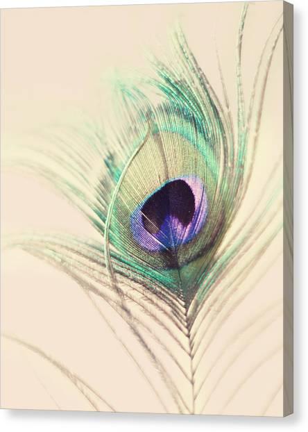 Peacocks Canvas Print - O'hara by Amy Tyler