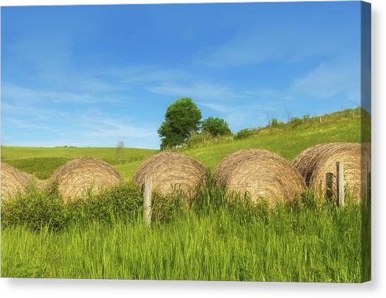 Hay Bales Canvas Print - Ohio Landscape In Summer by Tom Mc Nemar