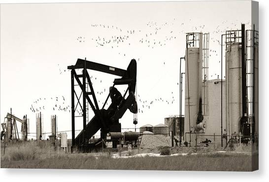 Fracking Canvas Print - Oil And Birds by Marilyn Hunt