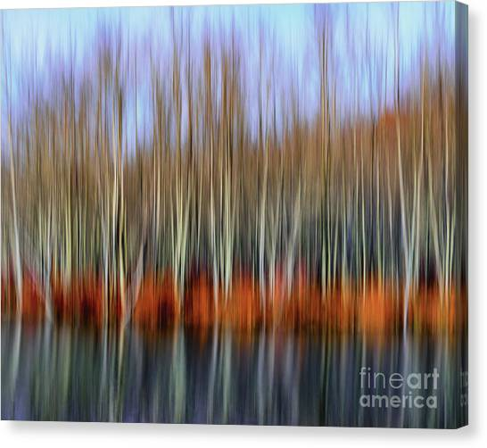 Oil Painting Reflection Canvas Print