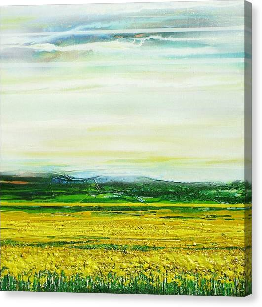Oil Seed Rape Tyndale No3 Canvas Print by Mike   Bell