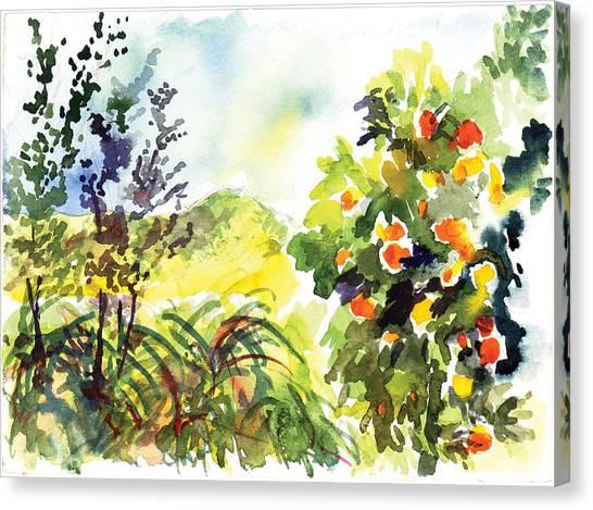 Ojai Oranges Canvas Print by Lily Hymen