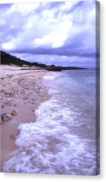 Okinawa Beach 17 Canvas Print by Curtis J Neeley Jr