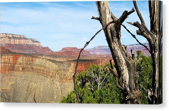 Ol' Fence On Horseshoe Mesa Canvas Print