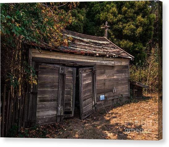Old Abandoned Shed Sonoma County Canvas Print