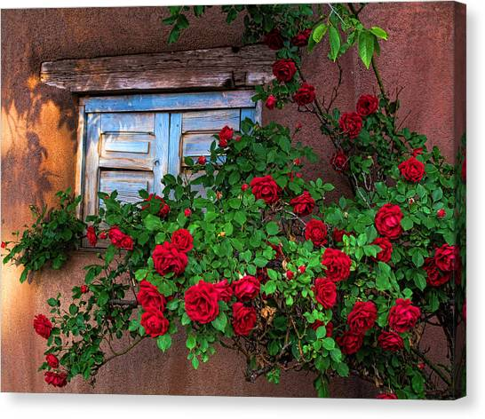 Old Adobe With Roses Canvas Print