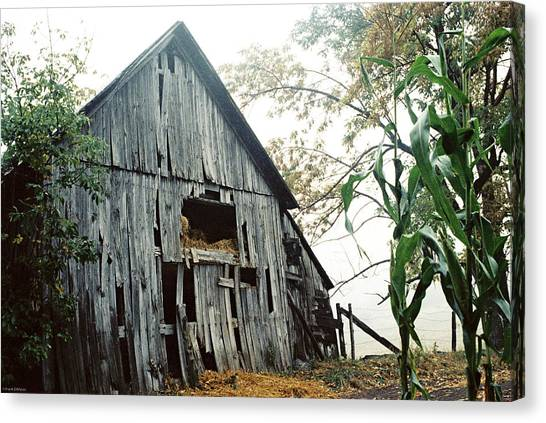 Old Barn In The Morning Mist Canvas Print
