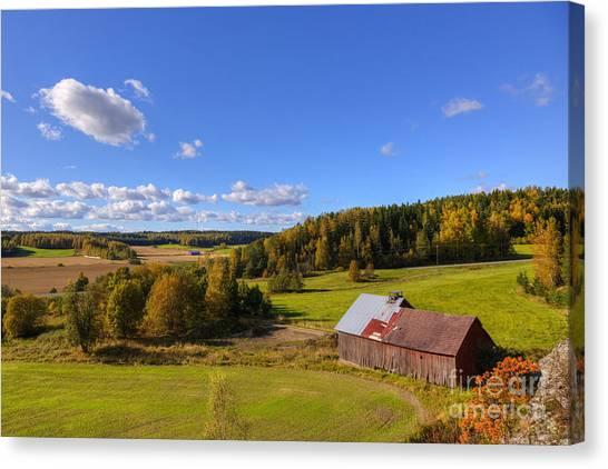 Birch Canvas Print - Old Barn by Veikko Suikkanen