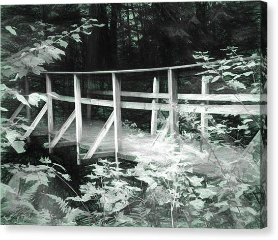 Old Bridge In The Woods Canvas Print