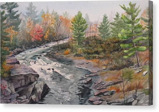 Old Burleigh Stream Canvas Print by Debbie Homewood