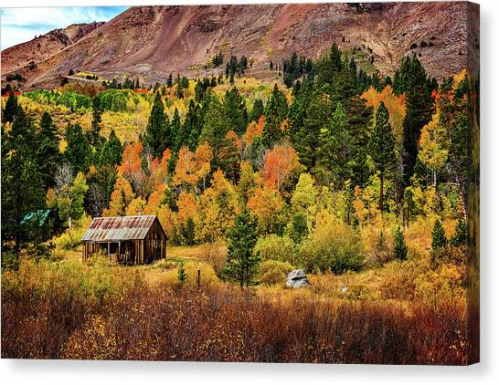 Old Cabin In Hope Valley Canvas Print
