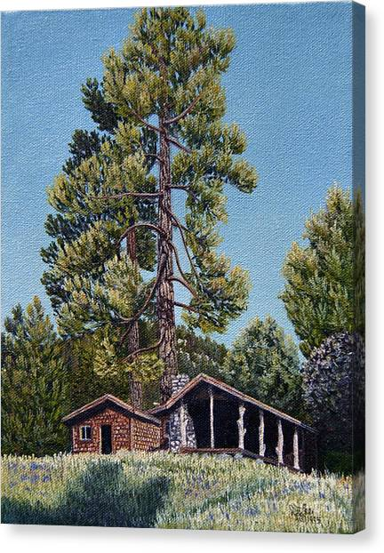 Old Cabin In The Pines Canvas Print by Jiji Lee