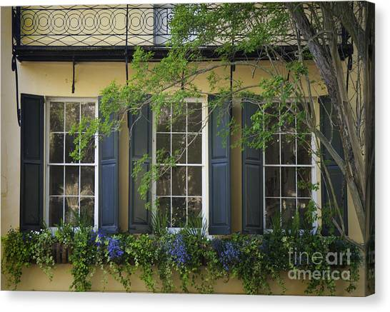 Old Charleston Window  Canvas Print