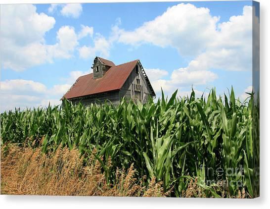 Old Corn Crib Canvas Print