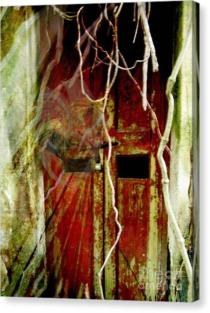 Old Door Set Three Something There Canvas Print by Kathy Daxon