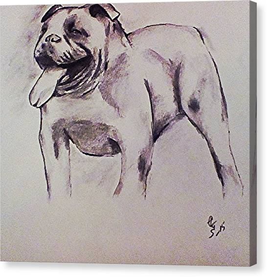 English Bull Dogs Canvas Print - Old English Bull by Crystal Webb