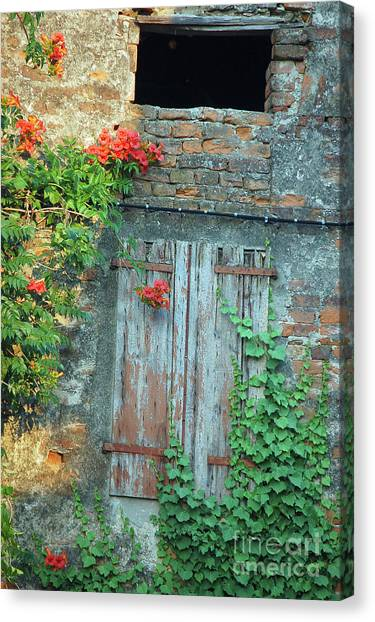 Old Farm Door Canvas Print
