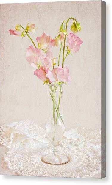 Old Fashioned Sweet Peas Canvas Print