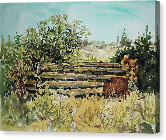 Old Log Shed Canvas Print