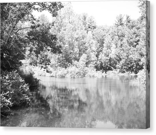 Old Michigan Creek Canvas Print by Derek Clark