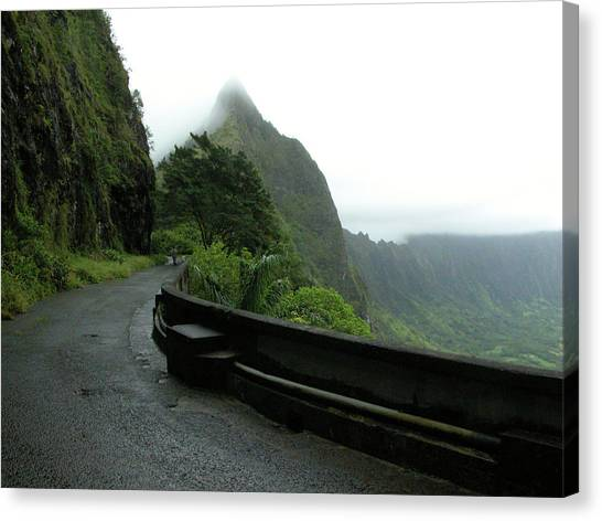 Canvas Print featuring the photograph Old Pali Road, Oahu, Hawaii by Mark Czerniec