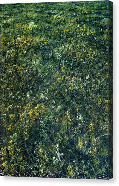Old Path Canvas Print by De Es Schwertberger