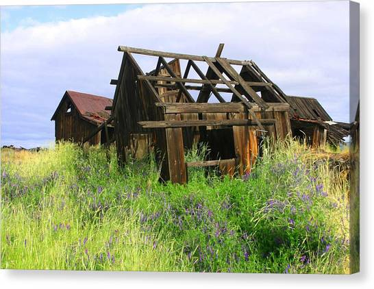 Old Shack At The Gorge Ba 3000 Canvas Print by Mary Gaines