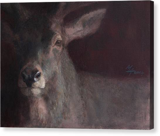 Old Stag Canvas Print