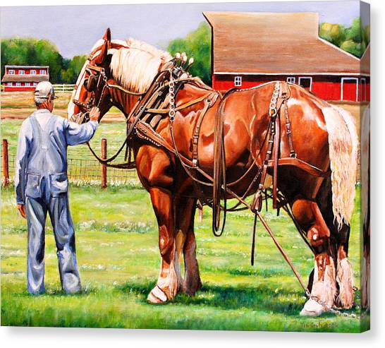 Draft Horses Canvas Print - Old Timers by Toni Grote