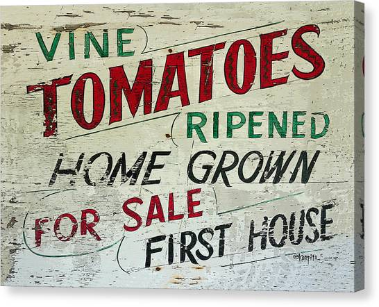 Old Tomato Sign - Vine Ripened Tomatoes Canvas Print